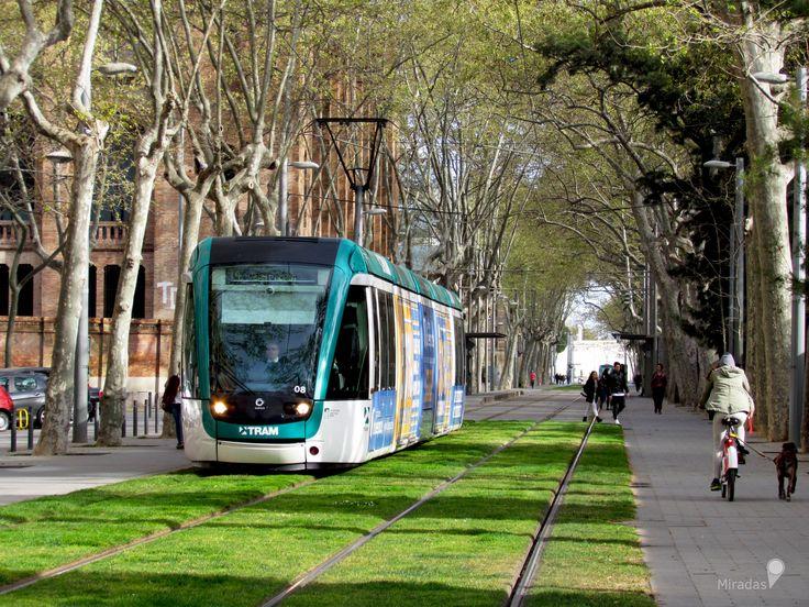 https://flic.kr/p/TwZYEC | Tram | Deslizándose silenciosa y amigablemente por este túnel natural que nuevamente comienza a llenarse de verde.  Barcelona, España.