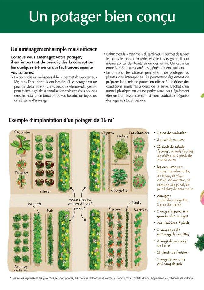 Catalogue et promotions de Magasin Vert