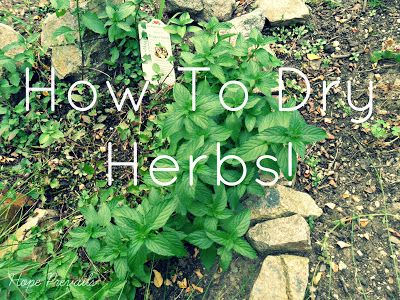 Hope Prevails: ~30 Day Blog Challenge - Day 8 - How To Dry Herbs (with pictures!) ~ #herbs #crafts #DIY #summer #garden #tutorial #wicca #pagan