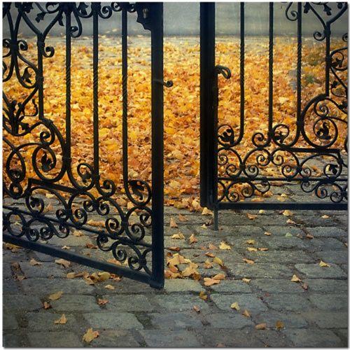 I Choose the Narrow Gate