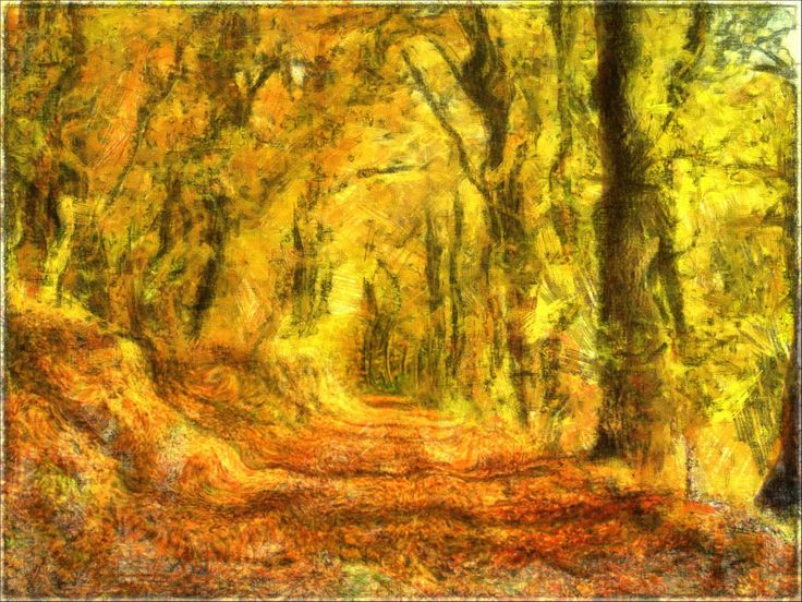 Check out Autumn forest path by Miklós Szigeti at eagalart.com