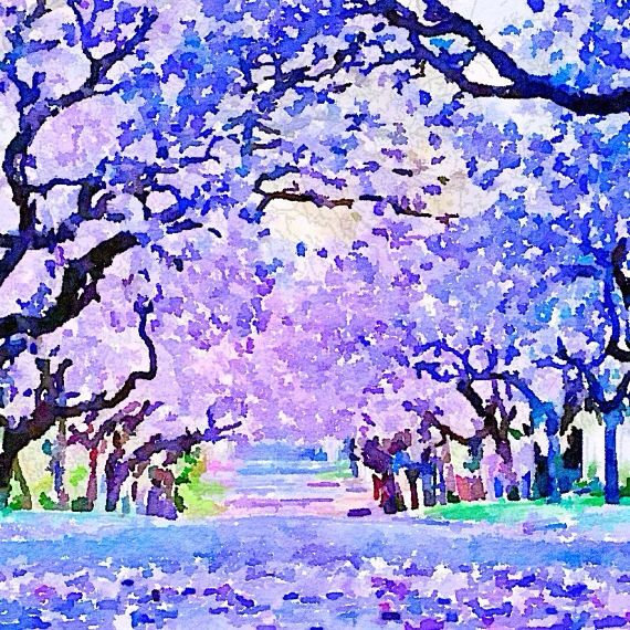 Stunning Jacaranda Tree Print. Digital Design from The Wishing Wall Art on Etsy. Printed on high quality paper in 4 sizes. Custom sizes are available. Digital download coming soon.