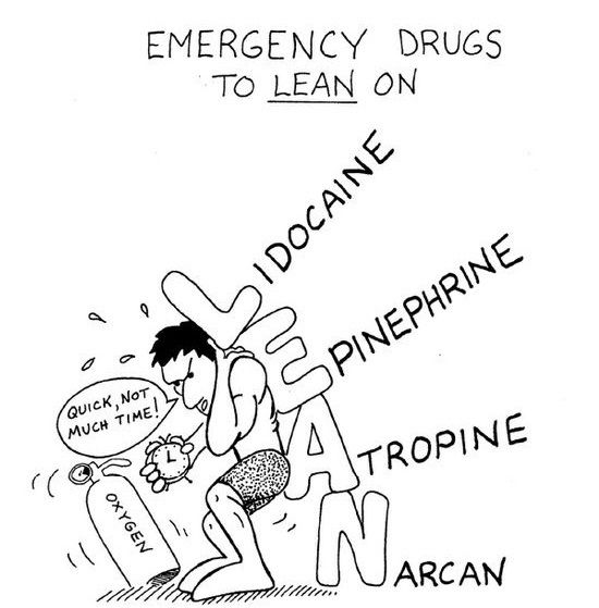 Emergency Drugs to LEAN on: •Lidocaine •Epinephrine •Atropine  •Narcan  Dentaltown - Branches of facial nerve: Temporal, Zygomatic, Buccal, Mandibular, Cervical.
