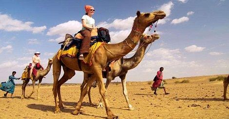 Shakta Travels - Find complete list of Rajasthan tour & travel packages. Go for camel safari for a unique experience. #ShaktaTravels #RajasthanTourPackages #IncredibleIndia Contact Us- Mobile No.:- +91 9711885571 Email:- info@shaktatravels.com http://shaktatravels.com/about-us