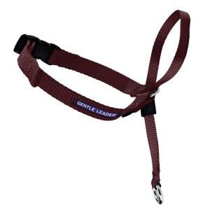 Premier Gentle Leader Dog Training Collar - Training - Collars, Harnesses & Leashes - PetSmart