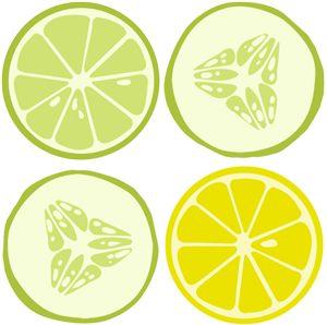 Silhouette Online Store View Design 32417 Citrus Scrub