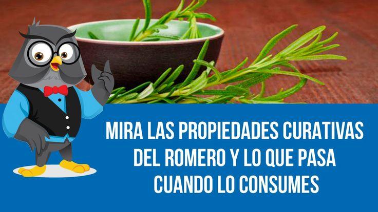 Mira Las Propiedades Curativas Del Romero Y Lo Que Pasa Cuando Lo Consumes