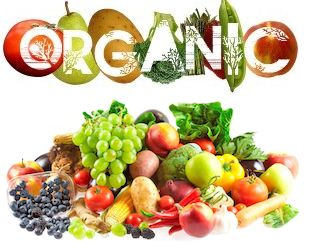 Organic fruits and vegetables indicated higher supplement content than their ordinarily delivered variants by an element of 90 percent.