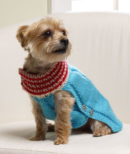 Knitting Patterns For Extra Small Dogs : Holiday Dog Sweater/ cute sweater for your fur baby/ quite dashing!!/ FREE KN...