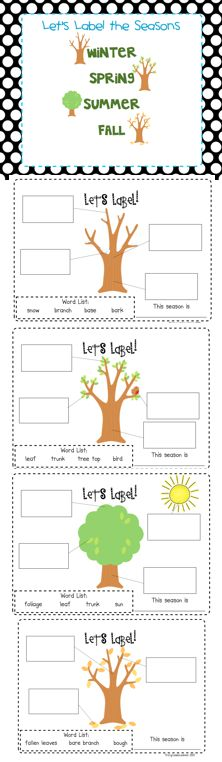 First Grade Blue Skies: Freebie This is a great activity that labels the different stages of a tree during the different seasons.