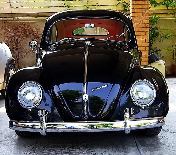 VW Oval Beetle 1954