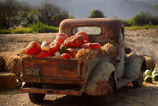 I would love this old pickup truck to display fall decor like this. How fun.
