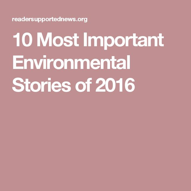 """10 Most Important Environmental Stories of 2016..... Jason Mark, The Sierra Club No matter the airtime they earned, all of these stories revealed some larger trend about the state of the environment and environmental advocacy."""" 1. Climate Science Denier-In-Chief, 2. The Standoff at Standing Rock.. 3. Fires and Floods: According to the World Meteorological Organization, 2016 will be the hottest year in history, breaking the record set in … well, set just a year ago.  read more...."""