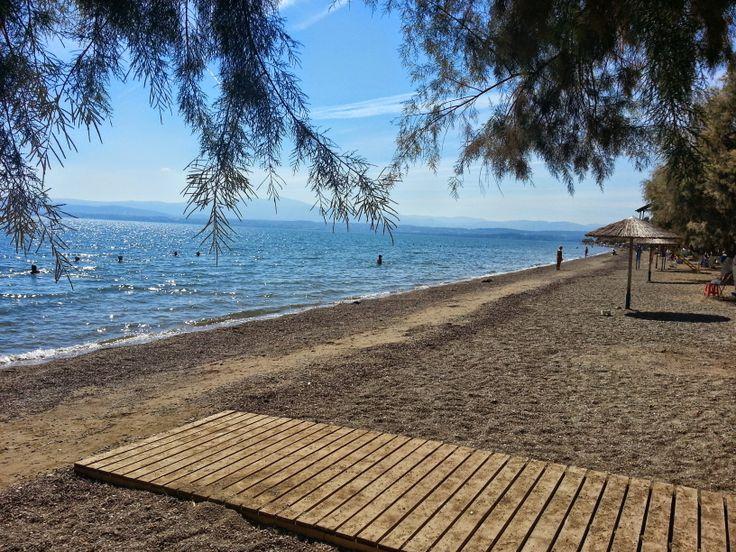 Lefkandi Beach on Evia Island