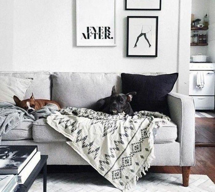 1000 Id Es Sur Le Th Me Canap S Gris Sur Pinterest Mobilier Scandinave Maisons Et Canap Gris