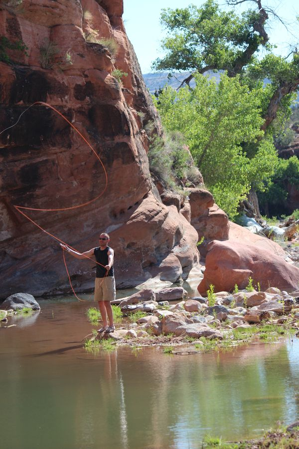 1000 images about outdoors fishing on pinterest utah for Fly fishing utah