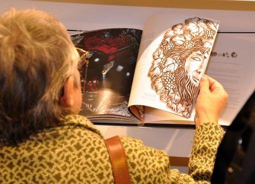 Feria del Libro 2013 Arte en PLata