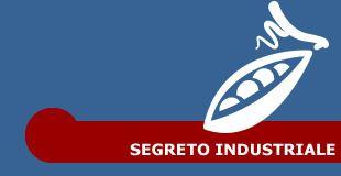Segreto industriale
