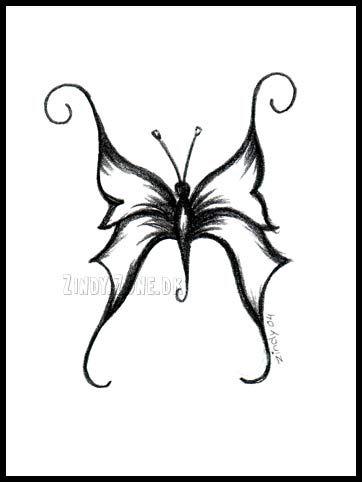 Pencil Drawings of Butterflies | Zindy-Zone.dk - Mixed Pencil Drawings