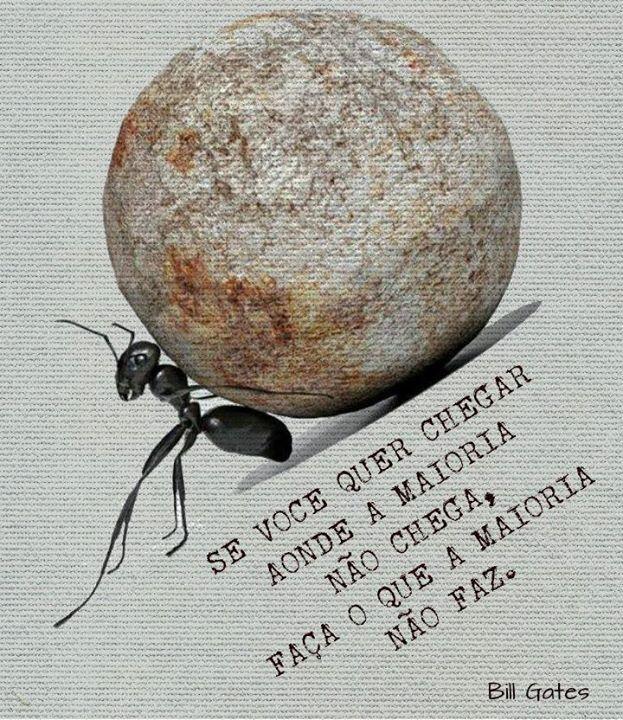 Aquele que quer a fruta deve subir na árvore. (Thomas Fuller)