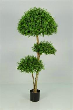 Kunstig Buksbom Eucalyptus