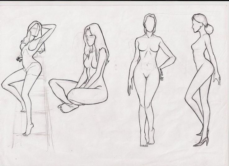 Female Body Studie By