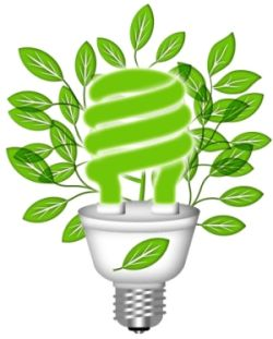 Chosing Grow Lights