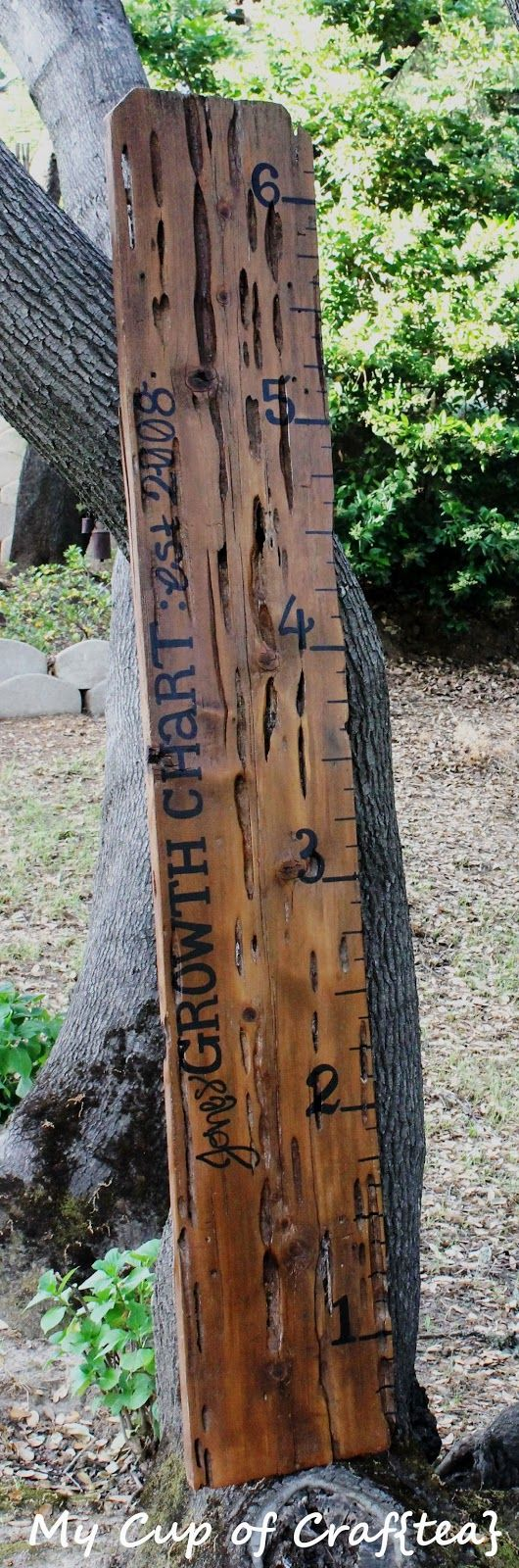 Hand-painted ruler growth chart from an old fence board <3
