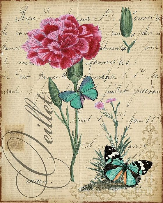 Ideales para enmarcar o forrar una libreta o par hacer decoupage   Enlaces:   http://plout-gallery.artistwebsites.com/featured/french-botani...