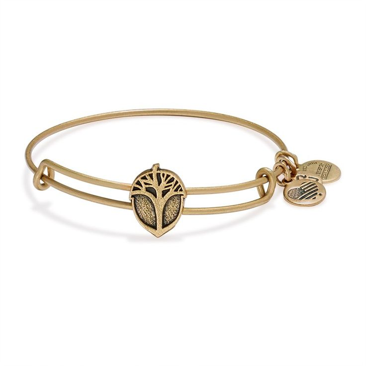 Unexpected Miracles Slider Charm Bangle | ALEX AND ANI
