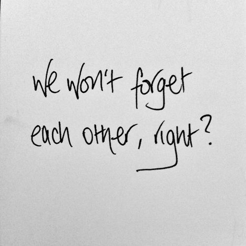 43 best images about Quotes on Pinterest   Gilbert blythe, No ...