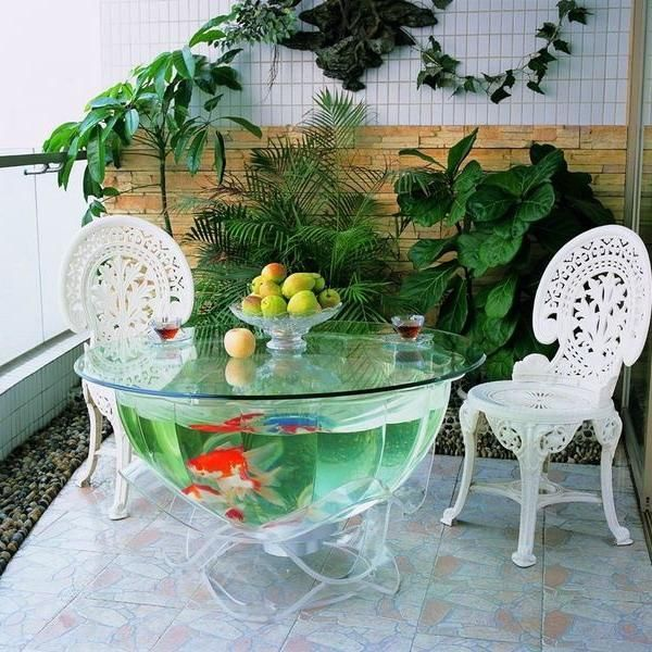unusual tropical fish tanks for interior decorating