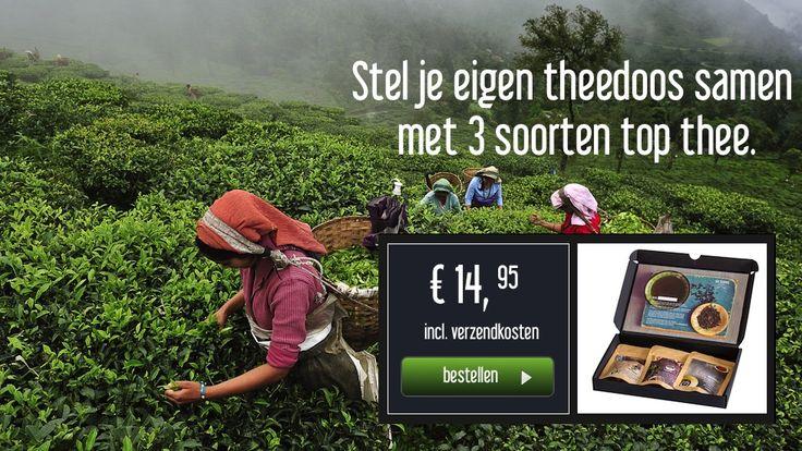 Six Leaves: ecologische en fairtrade thee. Perfecte cadeau voor mama, oma of zus