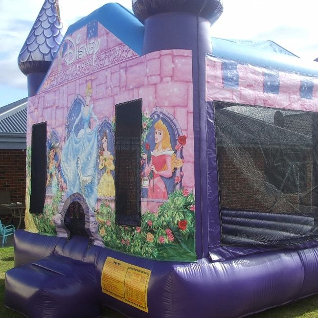 Princess Bouncy Castle  #bouncycastles #inflatablecastles #princess