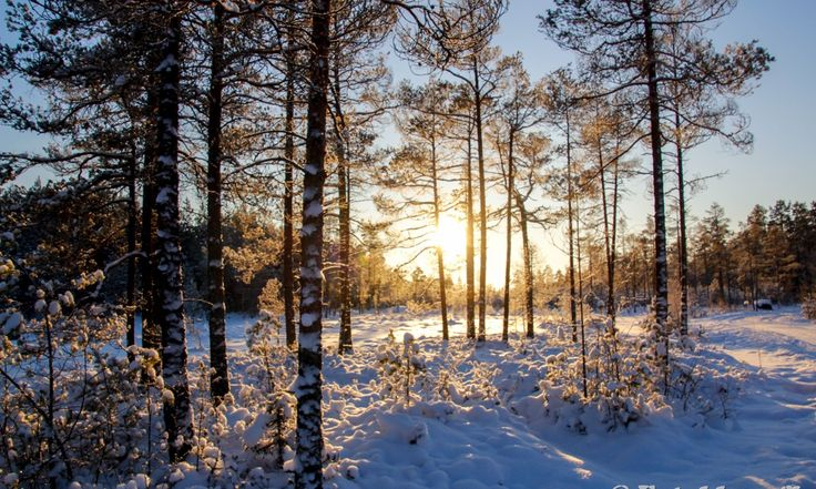 Sundom Vinterbilder 21.01.2016 - Fotoblogg.fi