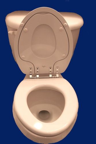 Mayfair 186CP 000 NextStep Built-in Potty Seat with Non-Tarnish Chrome Hinges, Elongated, White - Toilet Seats - Amazon.com