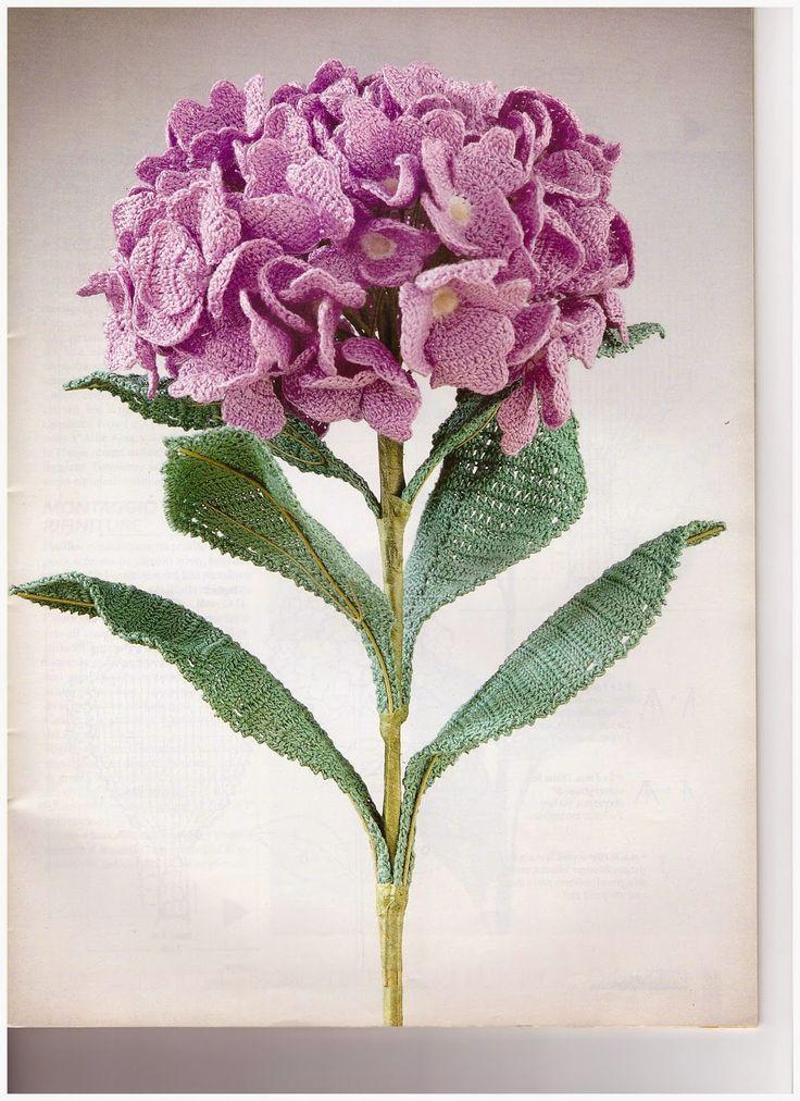 Oltre 20 migliori idee su tipi di fiori su pinterest for Tipi di fiori