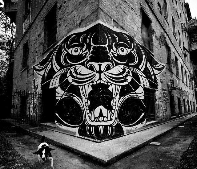 Fancy - Strong as a Tiger by JB RockBig Cat, Artists, Jb Rocks, Black Panthers, Graffiti, Street Art, Tigers, Jbrock, Streetart