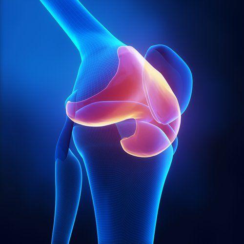 Les déchirures du cartilage sont l'une des lésions les plus fréquentes. Elles sont souvent très douloureuses,mais on pense actuellement que l'alimentation contribue à ce que les cartilages endommagés se régénèrent plus rapidement. Le cartilage est une charpente très souple qui sert de support à certaines structures très légères, comme le pavillon auriculaire, le nez et …
