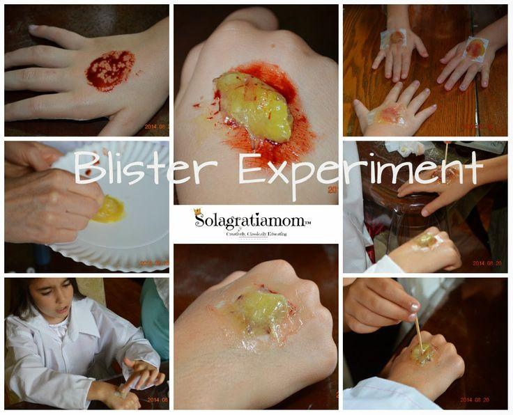 Solagratiamom: Wonderful Wednesdays is BACK! Types of Tissue Experiments!