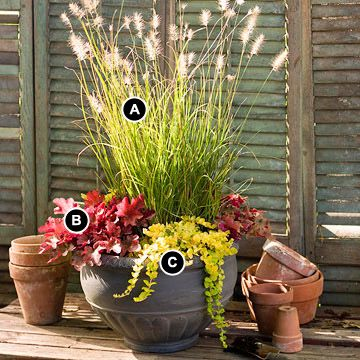 A 14-inch bowl becomes a dramatic statement in autumn when it's planted with a collection of perennials.