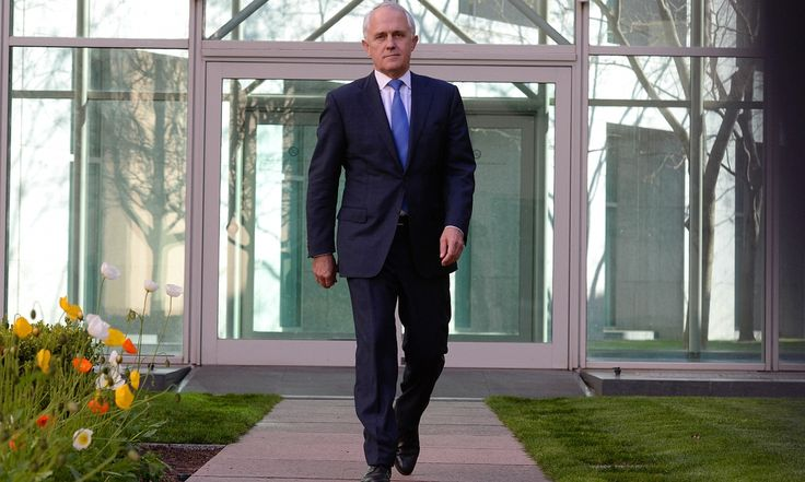 All of a sudden, it was on. Twitter reacts to Malcolm Turnbull's leadership challenge of Tony Abbott with shock, glee and memes