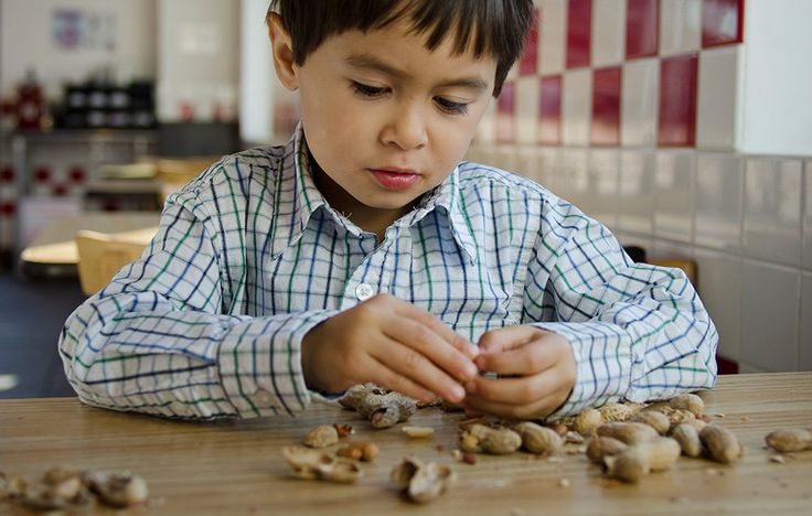 Nut allergies aren't just an inconvenience—they kill. Here's how to prevent a tragedy, follow @connectingforkids
