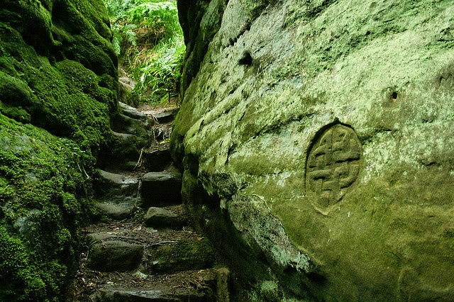 Forest stairway and Celtic design in Fife, Scotland [Fliedermaus]-want to go!!