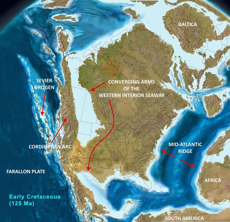 North American tectonics during the Early Cretaceous (125 Ma) Two large arms of the rising sea are about to converge, held up temporarily by tectonic barriers such as the Trans-Continental Arch and the Ouachita Uplift. Ocean basins, inherently deeper, are designated as dark blue: whereas, shallow epicontinental (epeiric) basins and continental shelves are light blue. Adapted from Ron Blakey and Colorado Plateau Geosystems Inc.