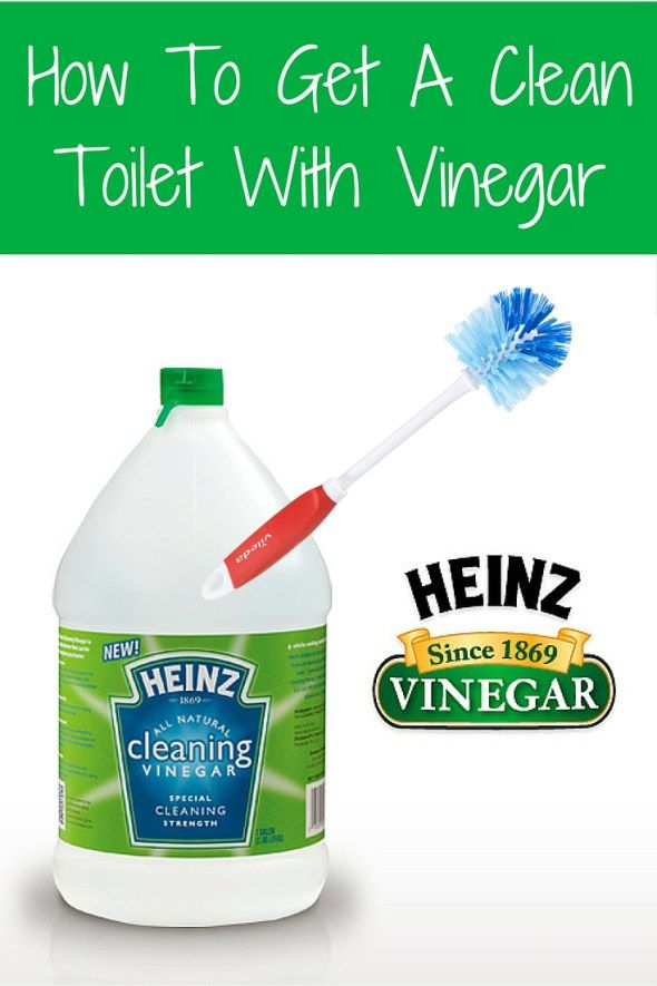 12 Best Toilet Cleaning Tips Images On Pinterest Toilet