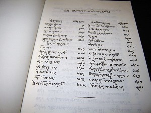 Tibetan New Testament / Tibet Outreach