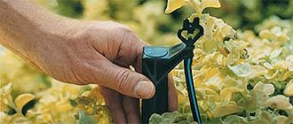 Drip-Irrigation and other garden info