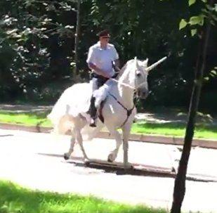 Mientras tanto en Rusia… policía monta un 'unicornio' en Moscú