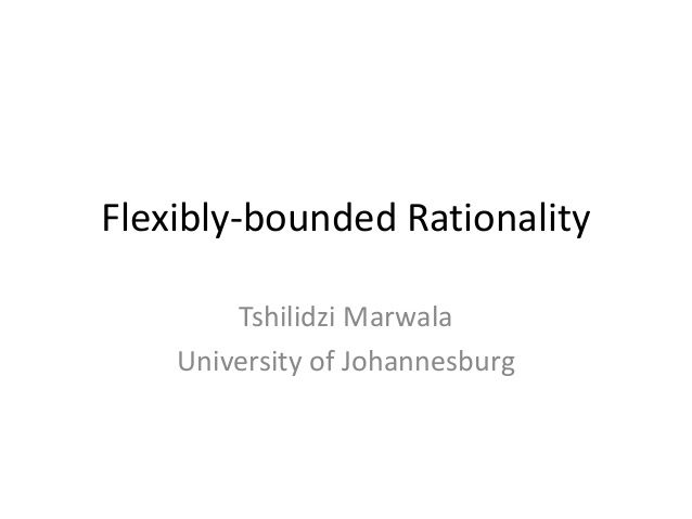 Flexibly-Bounded Rationality